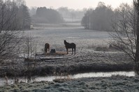 la-vallee-de-moon-sur-elle-en-hiver